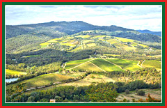 The Tuscan hills are the birthplace of the famous Chianti wine.